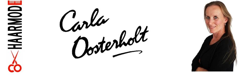 carlaoosterholt.nl
